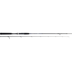 CANNE TOURNAMENT DAIWA SW AGS